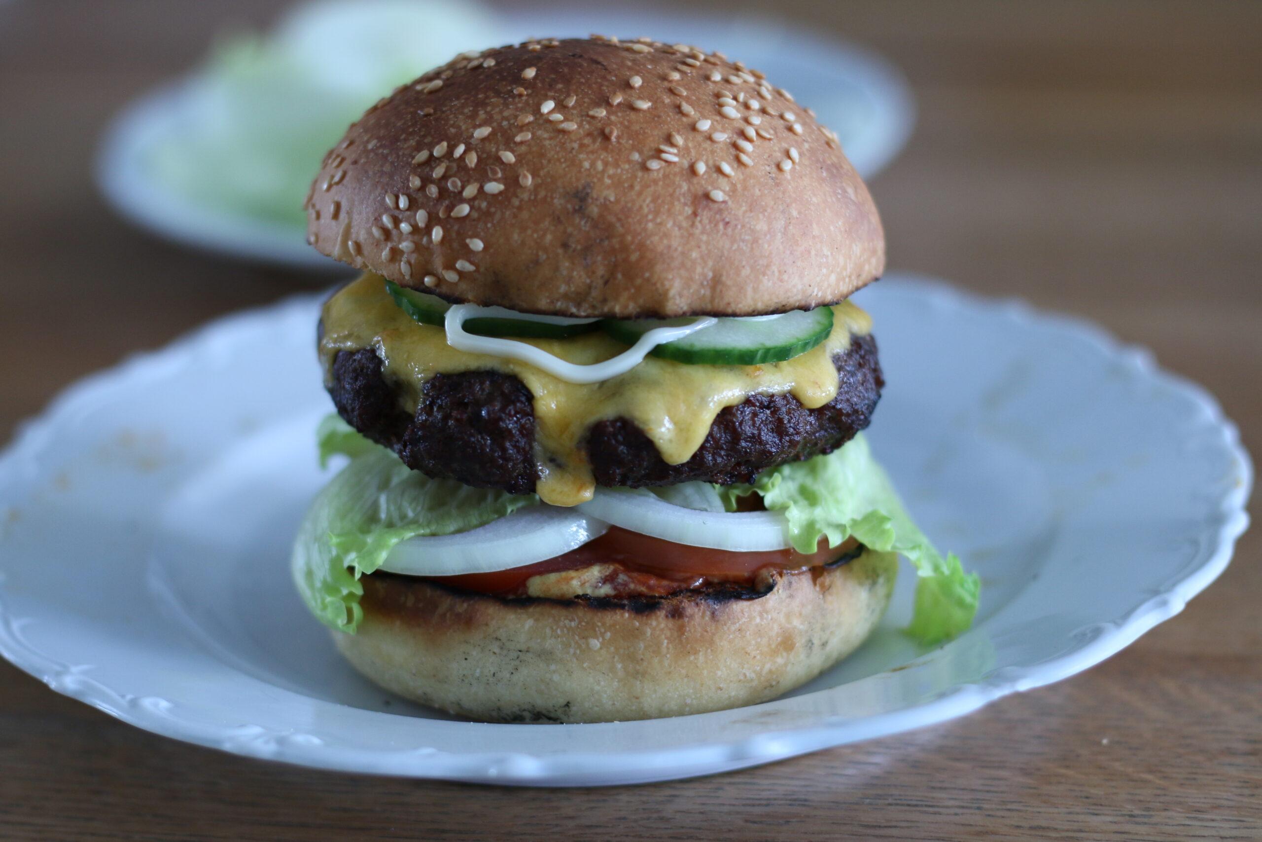 Burger Buns (Sauerteig und Ei)